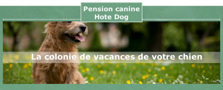Lien Pension canine Hote Dog